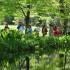 Attività didattica allo stagno di Villa Welsperg in Val Canali